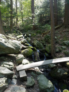 brook crossing on trail to falls